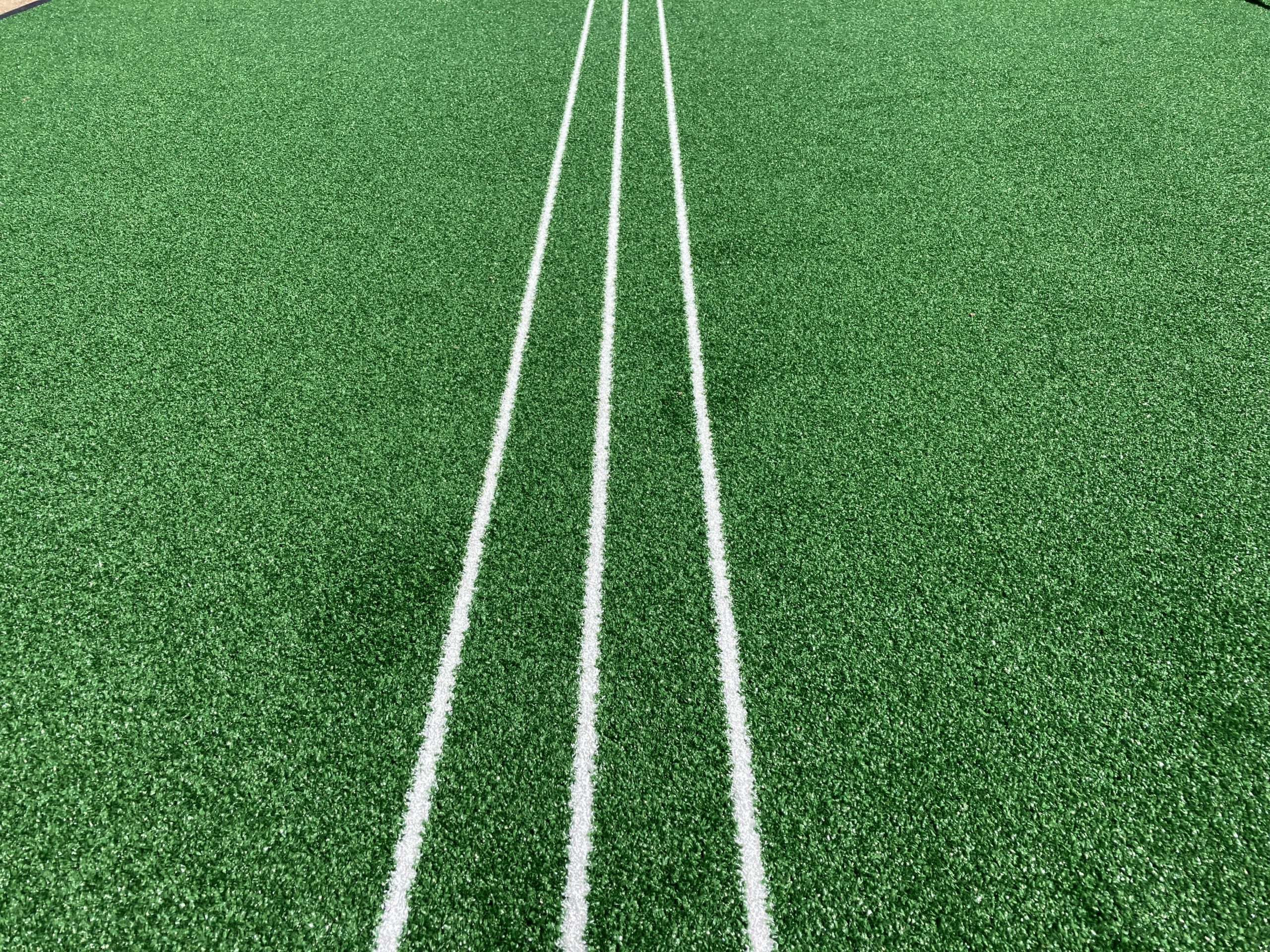 Cricket training lines
